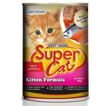 harga makanan kucing