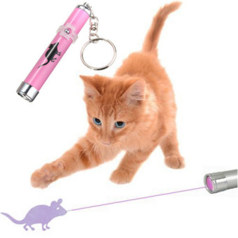 Harga 1pcs Creative and Fun Pet Cat Toy LED Laser Pointer Pen with Bright Animation - intl