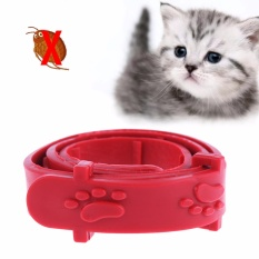 kalung kutu tungau caplak kucing anak anjing flea and tick collar