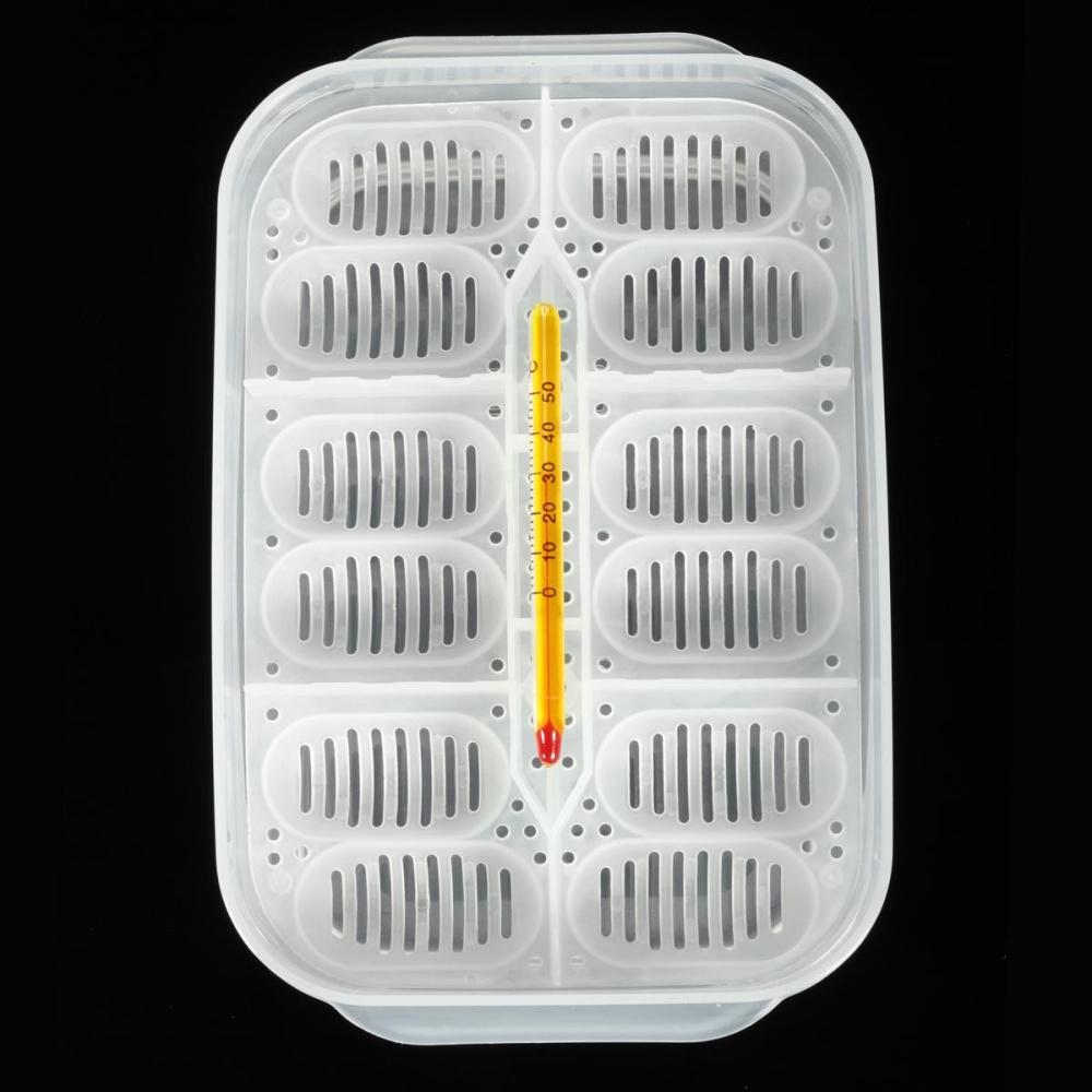 Reptile Egg Incubation Tray + Thermometer For Incubating GeckoLizard Snake Eggs - intl