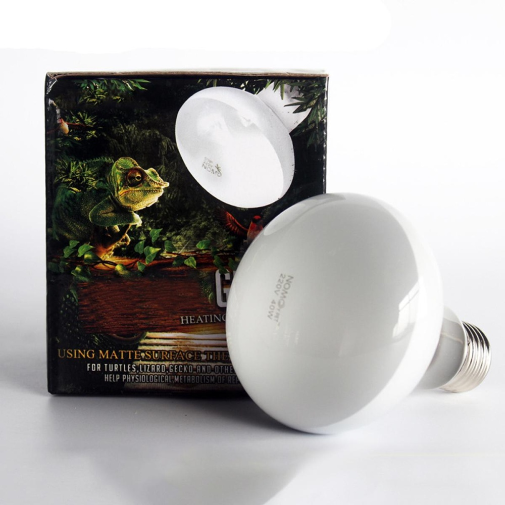 Reptile Heated Lamp 75w Heat Light White UVA Day Night AmphibiansFor Pet Animal Bird Snake Terrariums Bulb 220V - intl