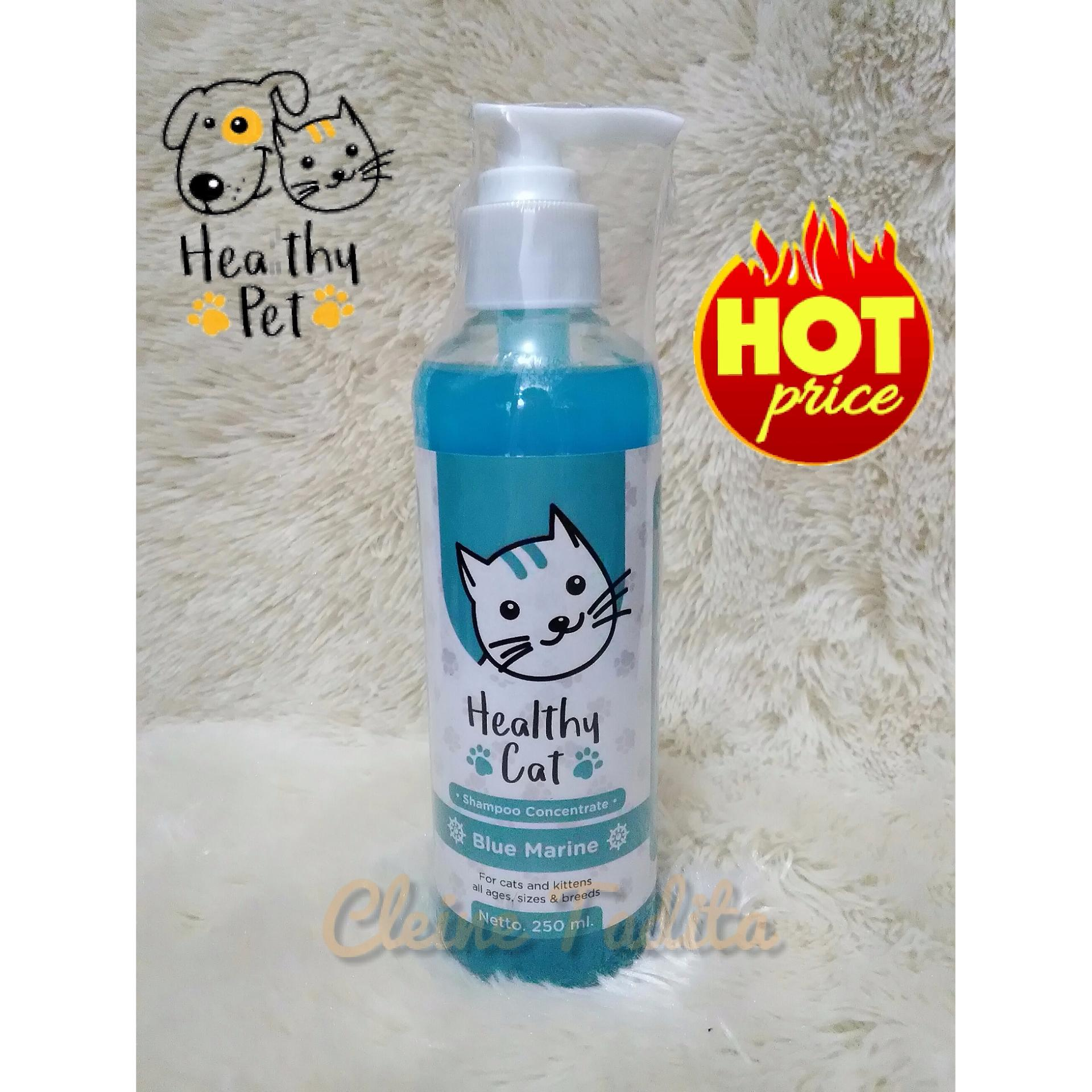 shampoo concentrate healthy cat - blue marine conditioner