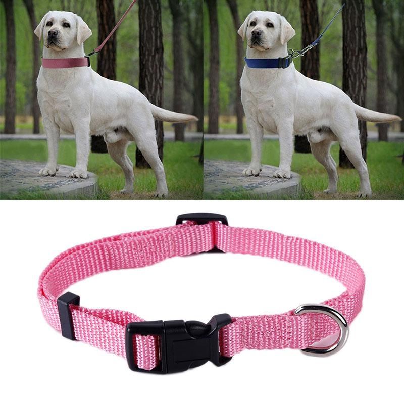 Suitable for All Dogs 3 Color Pet Tool Nylon Adjustable Dog Collarand Leash Set - intl