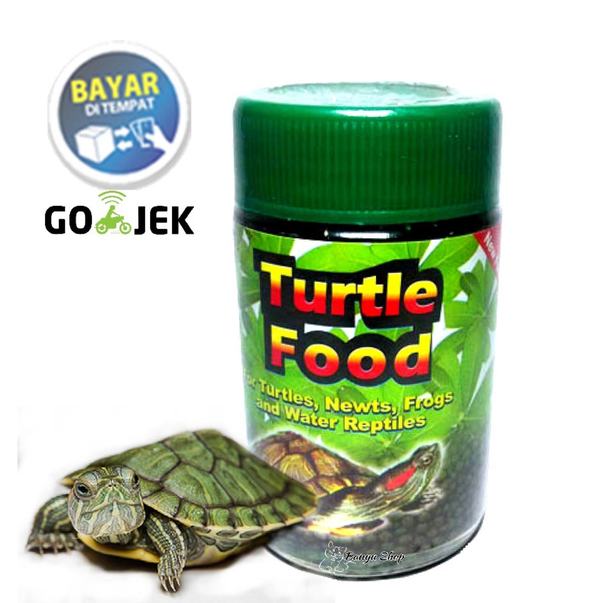 Makanan Kura Kura Turtle Food Toples Kecil Bsr Lazada Indonesia
